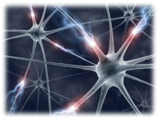 Lidský mozek má výkon 38 petaflops a paměť 3 581 TB